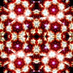 org_11_copy