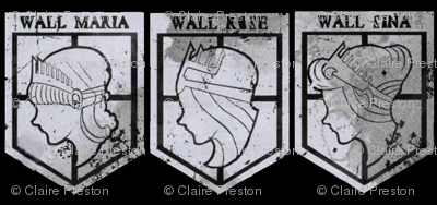 Attack on Titan Wall Crests Black