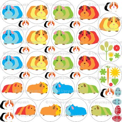 Guinea Pig Badges