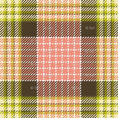 02347456 : tartan : dim sum