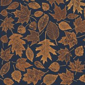 R0_leaf_etchings-autumn_shop_thumb