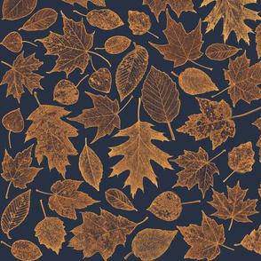 leaf etchings - sunrise colors