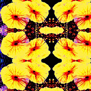 bright yellow flowers mirrored