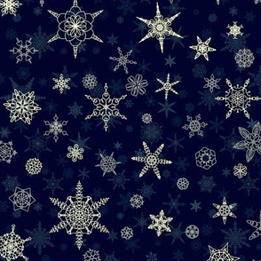 winter_snowflake_8