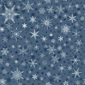 Winter Snowflake 3