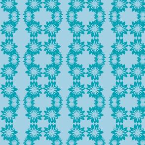 gazanias in blue
