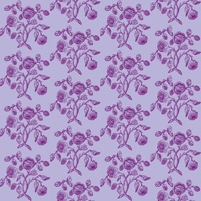 Caslon Rose Purple