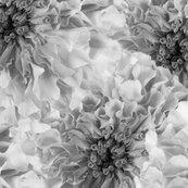 Floral_bigger_bw_copy_shop_thumb