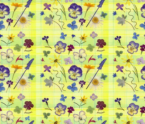 Rpansy_plaid_smaller_wrp_shop_preview