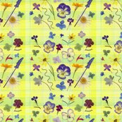 Rpansy_plaid_smaller_wrp_shop_thumb