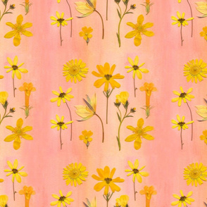 Yellow Daisy Garden