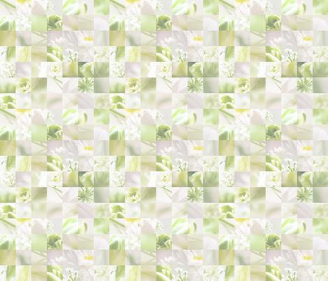 Macro collage fabric by allisoniforbes on Spoonflower - custom fabric
