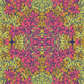 Sunny Slow : Novo Morris Collection