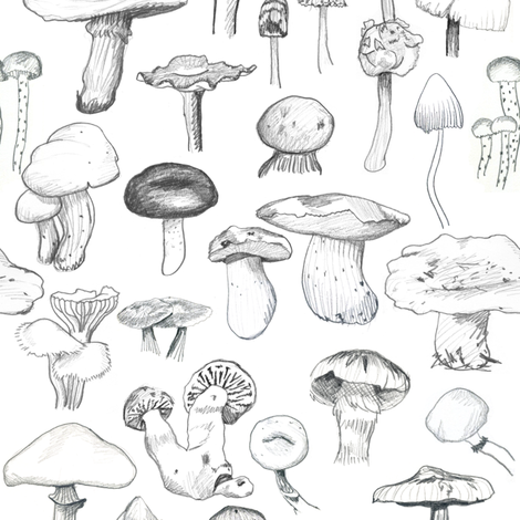 The Mushroom Gang fabric by crumpetsandcrabsticks on Spoonflower - custom fabric