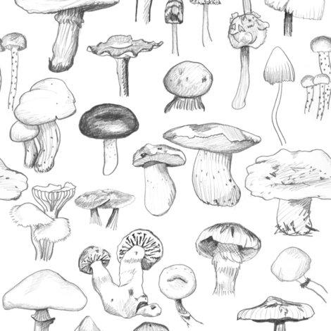 The_mushroom_gang_original_repaired_shop_preview