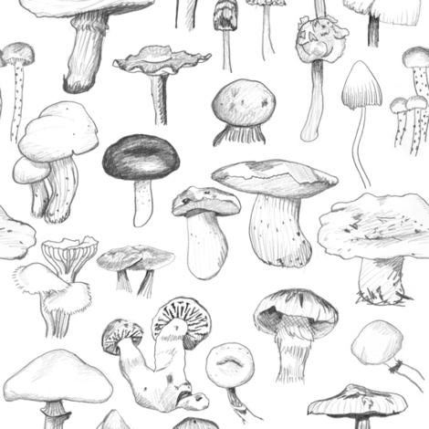The Mushroom Gang fabric by crumpetsandcrabsticks on Spoonflower - custom fabric
