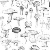 The_mushroom_gang_original_repaired_shop_thumb