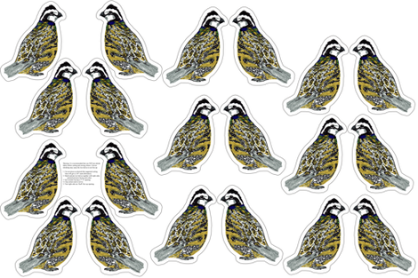 bobwhite quail plushie yard fabric by evenspor on Spoonflower - custom fabric