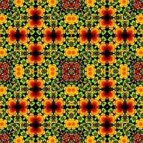 Kaleido Mosaic 11c