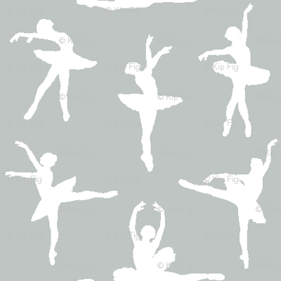 Ballerina Fabric Gray - Small