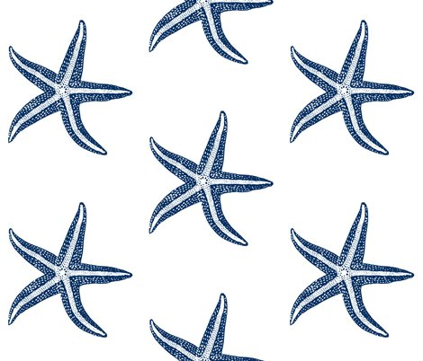 Rrstarfish_ed_shop_preview
