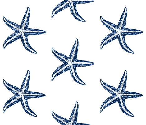 I wish upon a Starfish Blue fabric by lisakling on Spoonflower - custom fabric