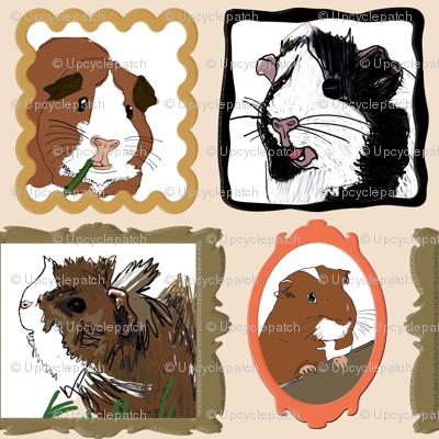 Guinea Pig Portraits