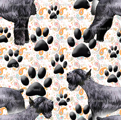 Giant Schnauzers and Paw Prints