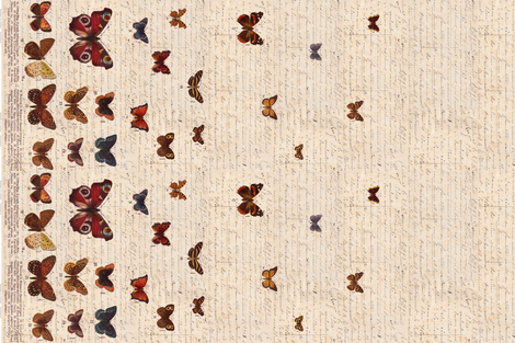 Butterfly Border - ZyndiePOP fabric by osoandbean on Spoonflower - custom fabric