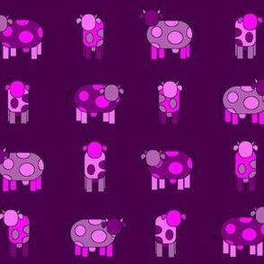 dark pink cows