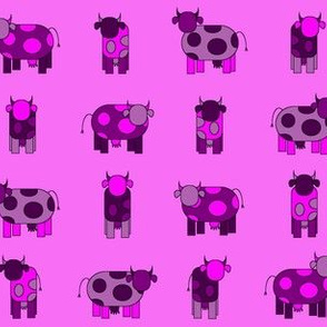 bright pink cows