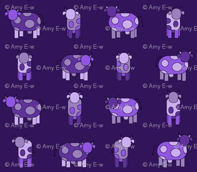 Dark purple cows