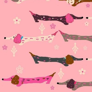 Dappled Dachshunds on Pink