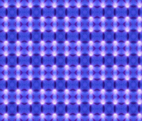 Rmornign_glory_square_2012_shop_preview