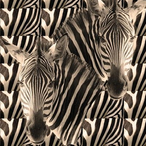 zebra_stripes_in_sepia