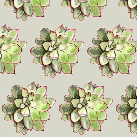 Echeveria  fabric by crumpetsandcrabsticks on Spoonflower - custom fabric