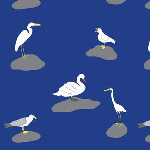 BirdLand_Navy