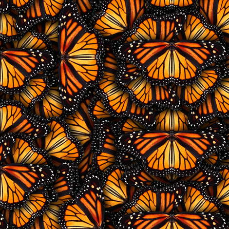 Heaps of Orange Monarch Butterflies fabric by bonnie_phantasm on Spoonflower - custom fabric