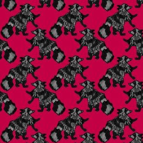 Houndstooth Raccoons on Red