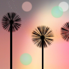 Sunset Dandelions