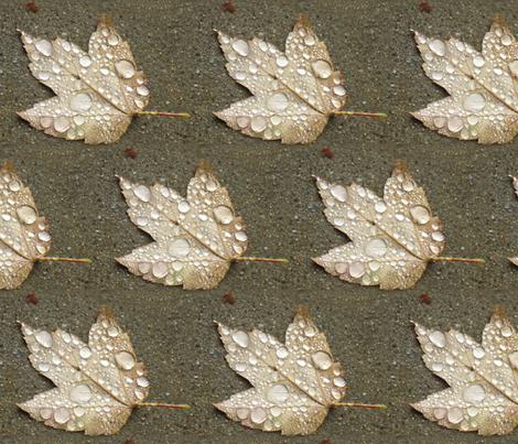 Maple Leaf with Raindrops - half-brick fabric by mina on Spoonflower - custom fabric