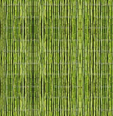 Dim Sum light green bamboo