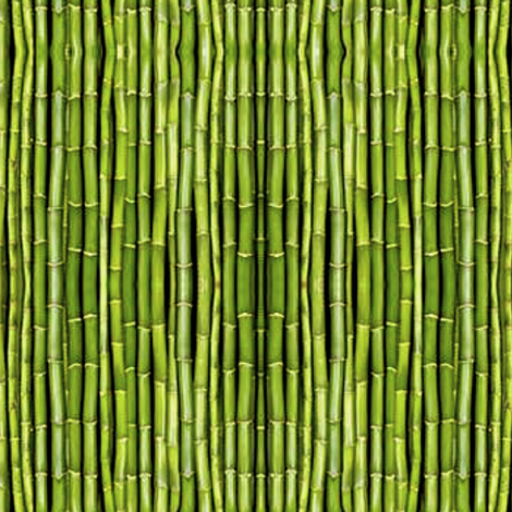 Dim Sum light green bamboo fabric by whimzwhirled on Spoonflower - custom fabric