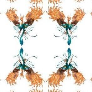 Cc-phoenix-ed-ch