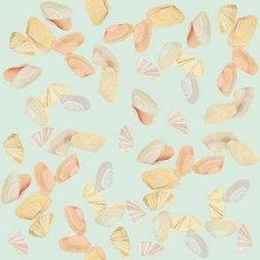 Small Shells Seafoam