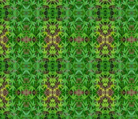 Rmaple_leaves_7328_8x8_shop_preview