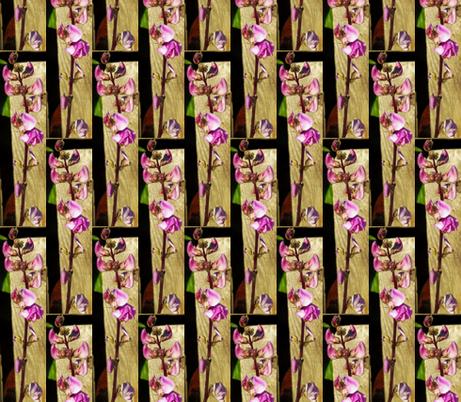 Lablab Bean Blossom in Half Drop Repeat fabric by anniedeb on Spoonflower - custom fabric
