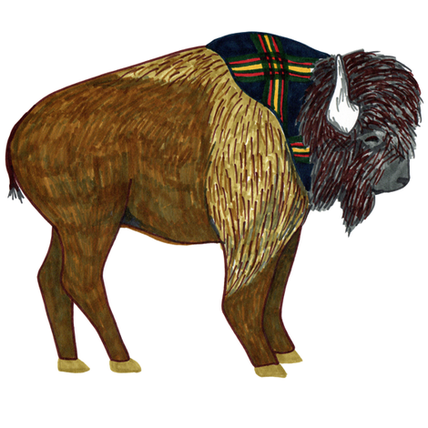 buffalo swatch fabric by evenspor on Spoonflower - custom fabric