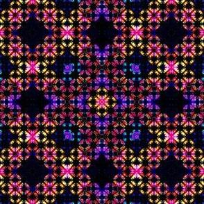 Rainbow bug Eights 01
