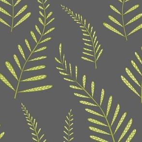 Ferns - grey